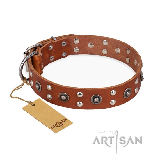 """Silver Elegance"" FDT Artisan Decorated Leather German Shepherd Collar with Old Silver-Like Plated Studs and Cones"
