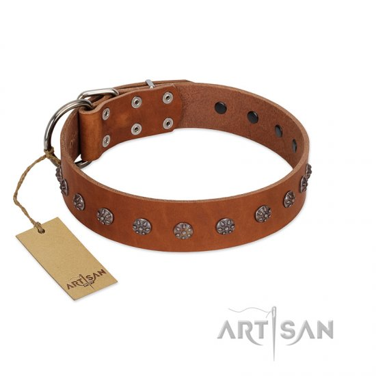 """Daintiness"" Designer Handmade FDT Artisan Tan Leather German Shepherd Collar with Silver-Like Adornments"