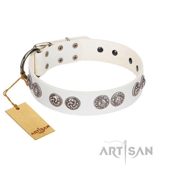 """Eye Candy"" Appealing FDT Artisan White Leather German Shepherd Collar with Chrome Plated Medallions"