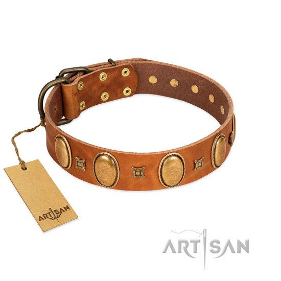 """Glossy Autumn"" Designer Handmade FDT Artisan Tan Leather German Shepherd Collar with Ovals and Studs"