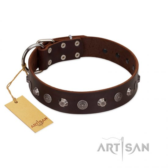 """Dark Chocolate"" Handmade FDT Artisan Brown Leather German Shepherd Collar with Studs"
