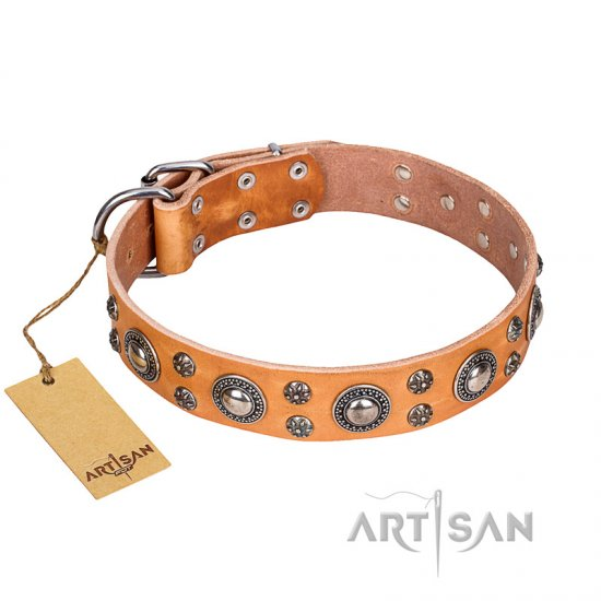 'Extra Sparkle' FDT Artisan Handcrafted German Shepherd Tan Leather Dog Collar