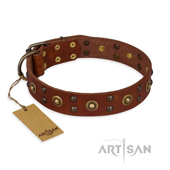 """Unfailing Charm"" FDT Artisan Studded Tan Leather German Shepherd Collar"