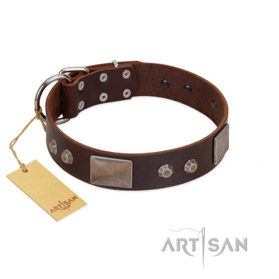 """Stone Stars"" Stylish Handmade FDT Artisan Brown Leather German Shepherd Collar"