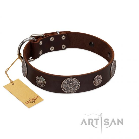 """Flashy Woof"" FDT Artisan Brown Leather German Shepherd Collar with Chrome Plated Brooches"