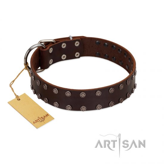 """Star Party"" Handmade FDT Artisan Brown Leather German Shepherd Collar with Silver-Like Studs"