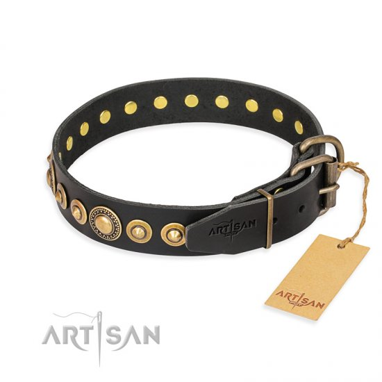 """Gold Mine"" FDT Artisan Black Leather German Shepherd Collar with Amazing Bronze-Plated Round Studs"