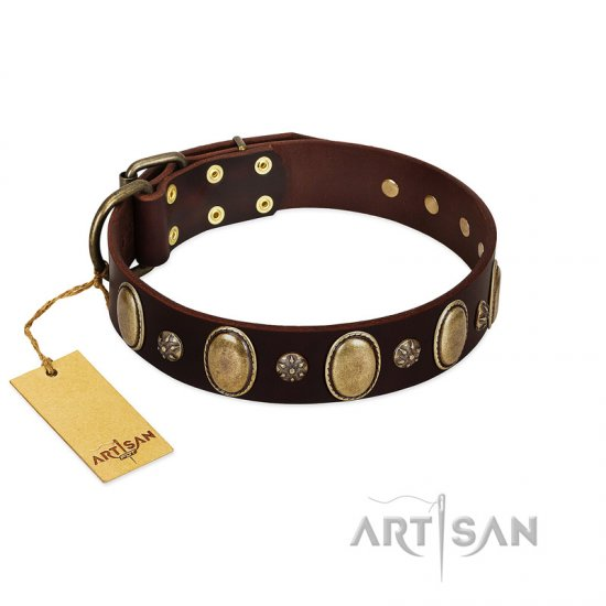 """Bronze Idol"" FDT Artisan Brown Leather German Shepherd Collar with Eye-catching Ovals and Small Studs"