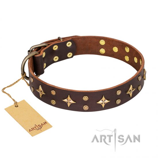'High Fashion' FDT Artisan Embellished Brown Leather German Shepherd Collar