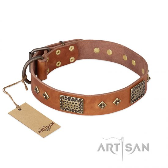 """Catchy Look"" FDT Artisan Decorated Tan Leather German Shepherd Collar"
