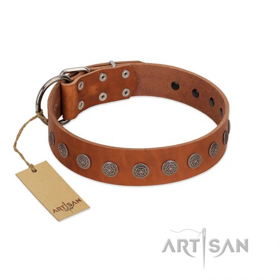 """Lucky Star"" Handmade FDT Artisan Designer Tan Leather German Shepherd Collar with Round Plates"