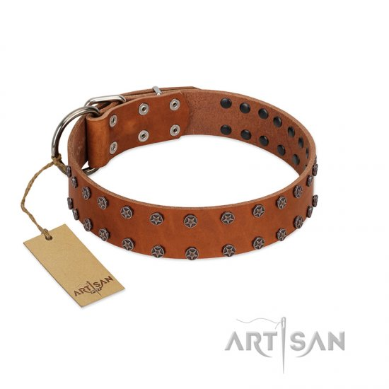 """Star Light"" Stylish FDT Artisan Tan Leather German Shepherd Collar with Silver-Like Studs"