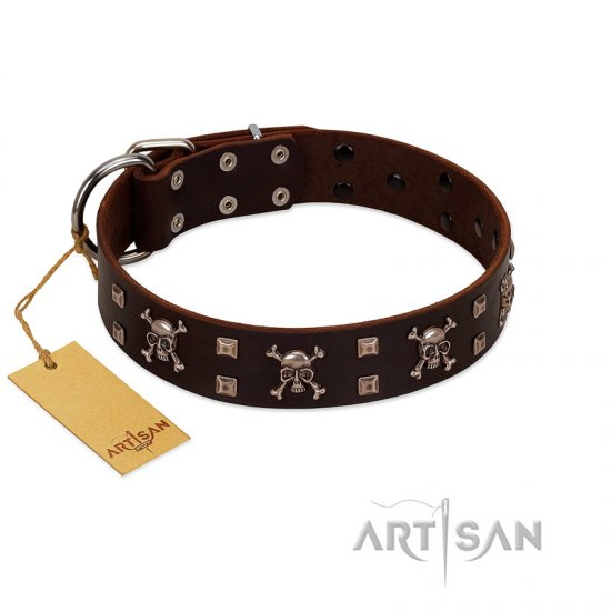 """Menacing Allure"" FDT Artisan Brown Leather German Shepherd Collar Embellished with Silvery Crossbones and Square Studs"
