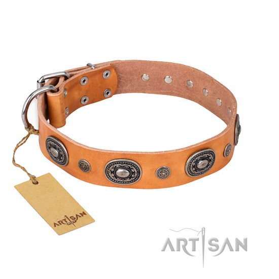 """Twinkle Twinkle"" FDT Artisan Incredible Studded Tan Leather German Shepherd Collar"