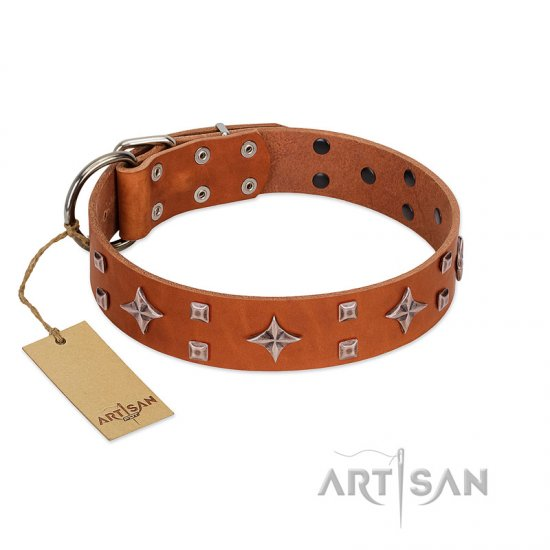"""Tawny Beauty"" FDT Artisan Tan Leather German Shepherd Collar Adorned with Stars and Tiny Squares"