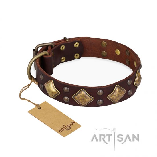 """Golden Square"" FDT Artisan Brown Leather German Shepherd Collar with Large Squares"