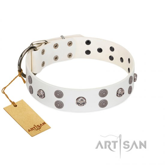 """Edgy Look"" FDT Artisan White Leather German Shepherd Collar with Silver-like Skulls"
