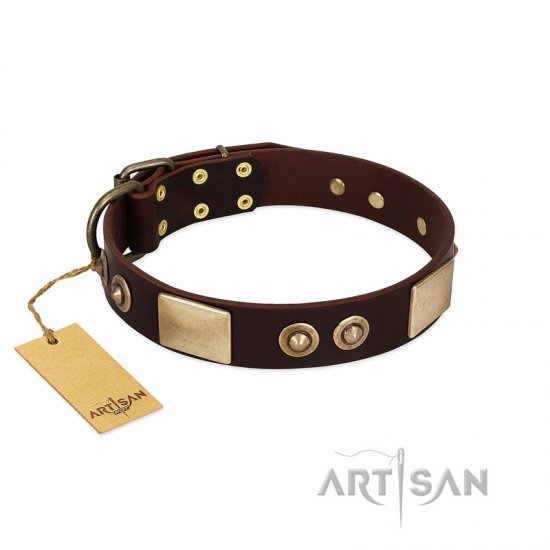 """Sense of Freedom"" FDT Artisan Brown Leather German Shepherd Collar with Old Bronze-Plated Studs and Plates"