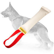 Fire Hose Dog Bite Toy With Handle for Young Dog Training