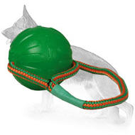 Roll and Throw Interactive Water Ball for Fun and Effective Training - 3.5 inch (9 cm)
