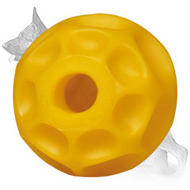 Medium Tetraflex Chewing Ball (4 inch) for German Shepherd