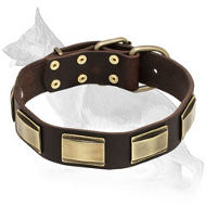 Leather German Shepherd Collar with Brass Plates