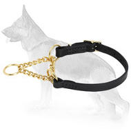 Smart Control Martingale Collar of Brass and Leather