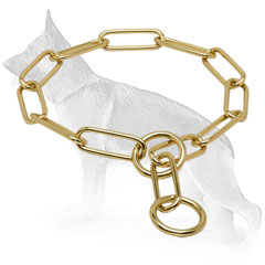 Dog Choke Collar of Brass
