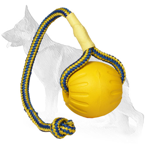 Durable Colorful Dog Ball for Playing