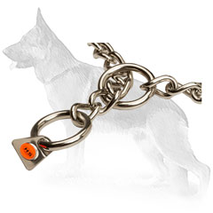 Dog Training Collar of Stainless Steel