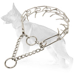 Dog Pinch Collar for Obedience Training