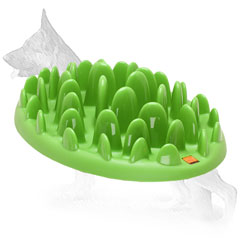 Plastic German Shepherd Plate with Grass Shape