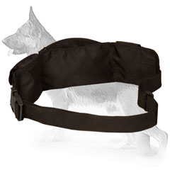 Nylon Dog Pouch with Adjustable Waist Strap
