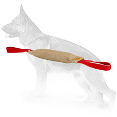 Dog-safe Jute Bite Tug