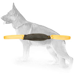Leather Bite Tug for Retrieve and Drive Training