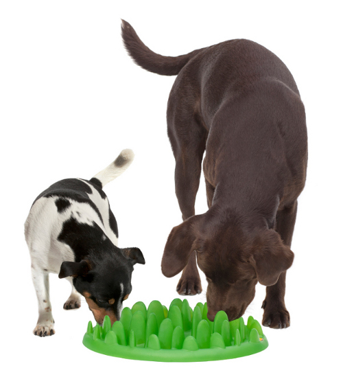 Plastic Grass Dog Plate for 2 Dogs