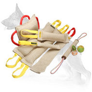 All in One Jute Bite Set (6 Bite Tugs) and 3 Exquisite Gifts (value $24.2)
