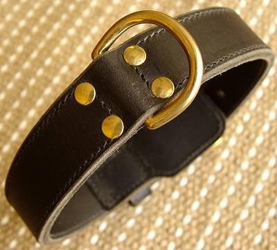 Agitation Leather Dog Collar