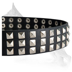Three Rows Nickel Plated Pyramids Riveted to Leather German Shepherd Collar