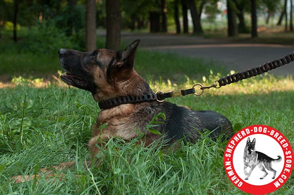 Leather German Shepherd Collar Braided Design