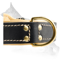 Dog Collar Ring for Leash Attachment