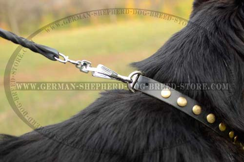 D-Ring Nickel Plated On Dog Collar Leather Decorated