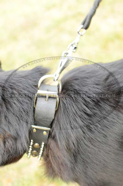 D-Ring Steel Durable On Dog Collar Leather