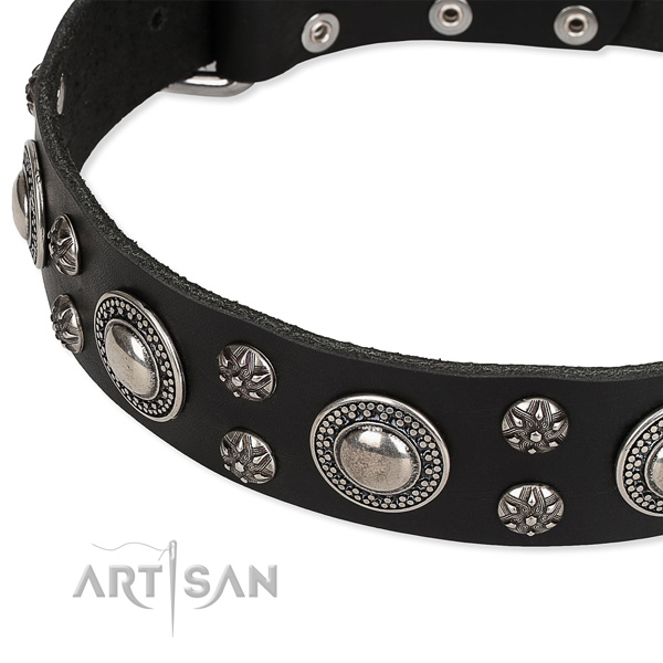 Adjustable leather dog collar with almost unbreakable non-rusting fittings
