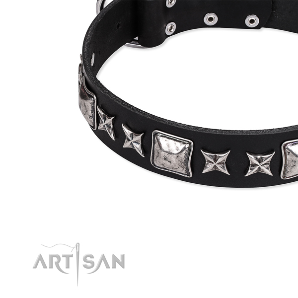 Full grain natural leather dog collar with extraordinary studs