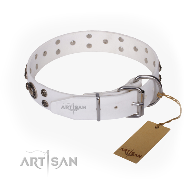 Everyday use full grain natural leather collar with adornments for your dog
