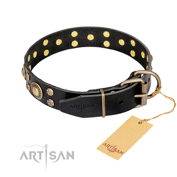 Stylish walking full grain natural leather collar with embellishments for your four-legged friend