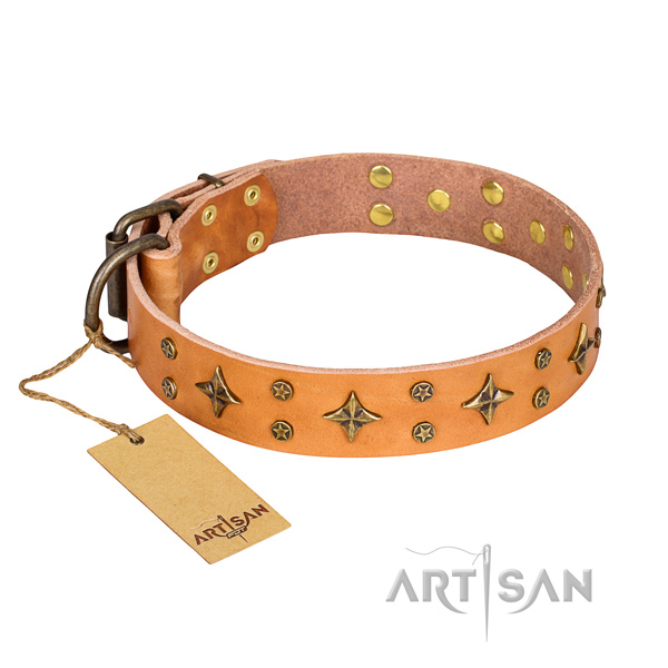Unusual full grain natural leather dog collar for daily walking