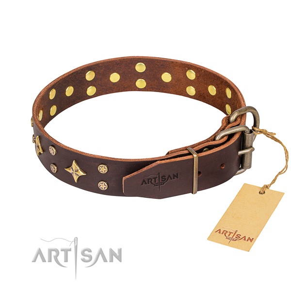Daily walking full grain genuine leather collar with adornments for your canine