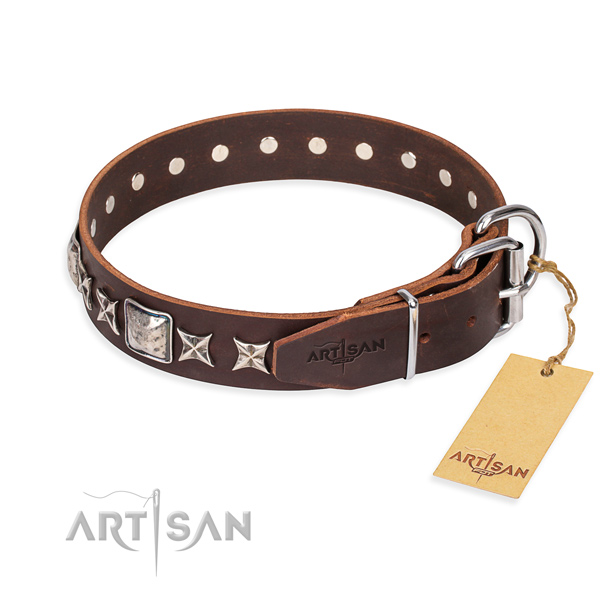 Daily walking full grain leather collar with adornments for your pet